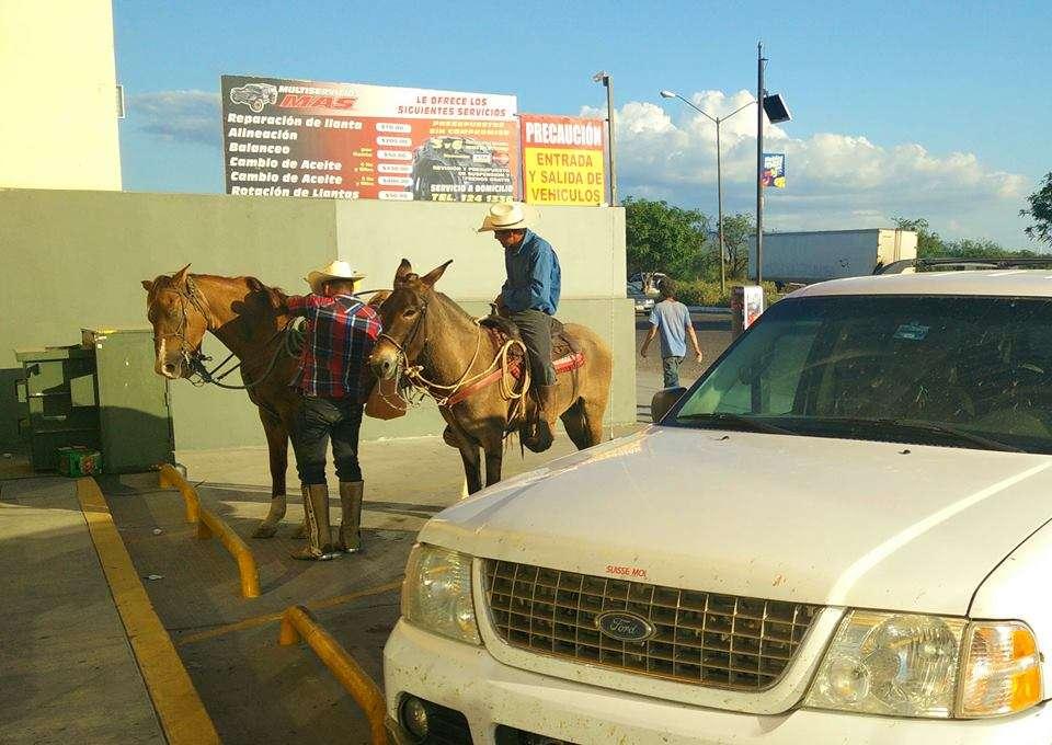 Cowboys - 10 conseils essentiels pour un roadtrip au Mexique - Nomad Junkies