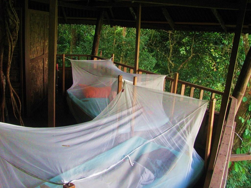 Hébergement - VESTA dormir jungle Laos - Nomad Junkies