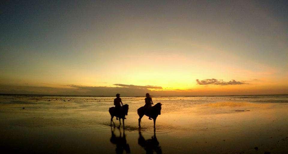 Équitation - Voyager gratuitement grâce au travel hacking - Nomad Junkies