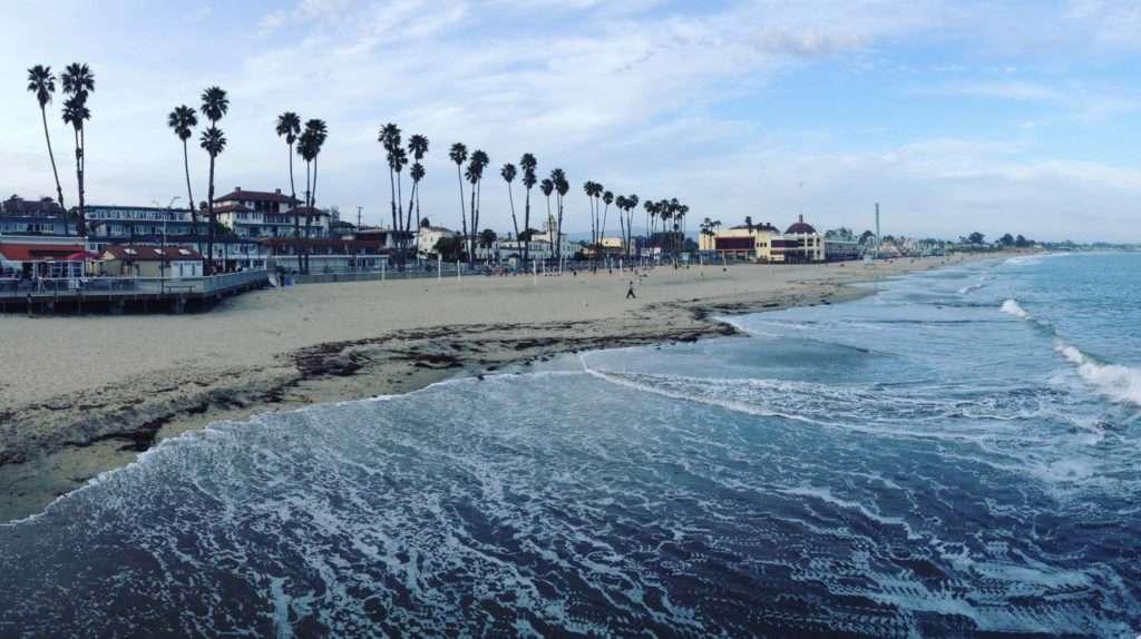 Palmiers plage - La peur de voyager et comment la surmonter - Nomad Junkies