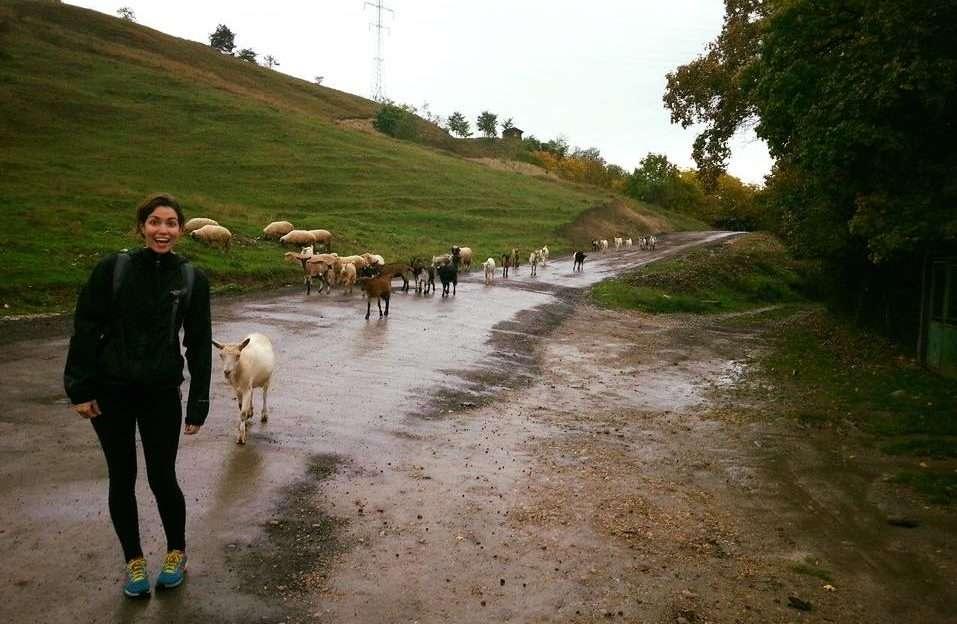 Moutons - Portrait de nomade : Marie-Noel - Nomad Junkies