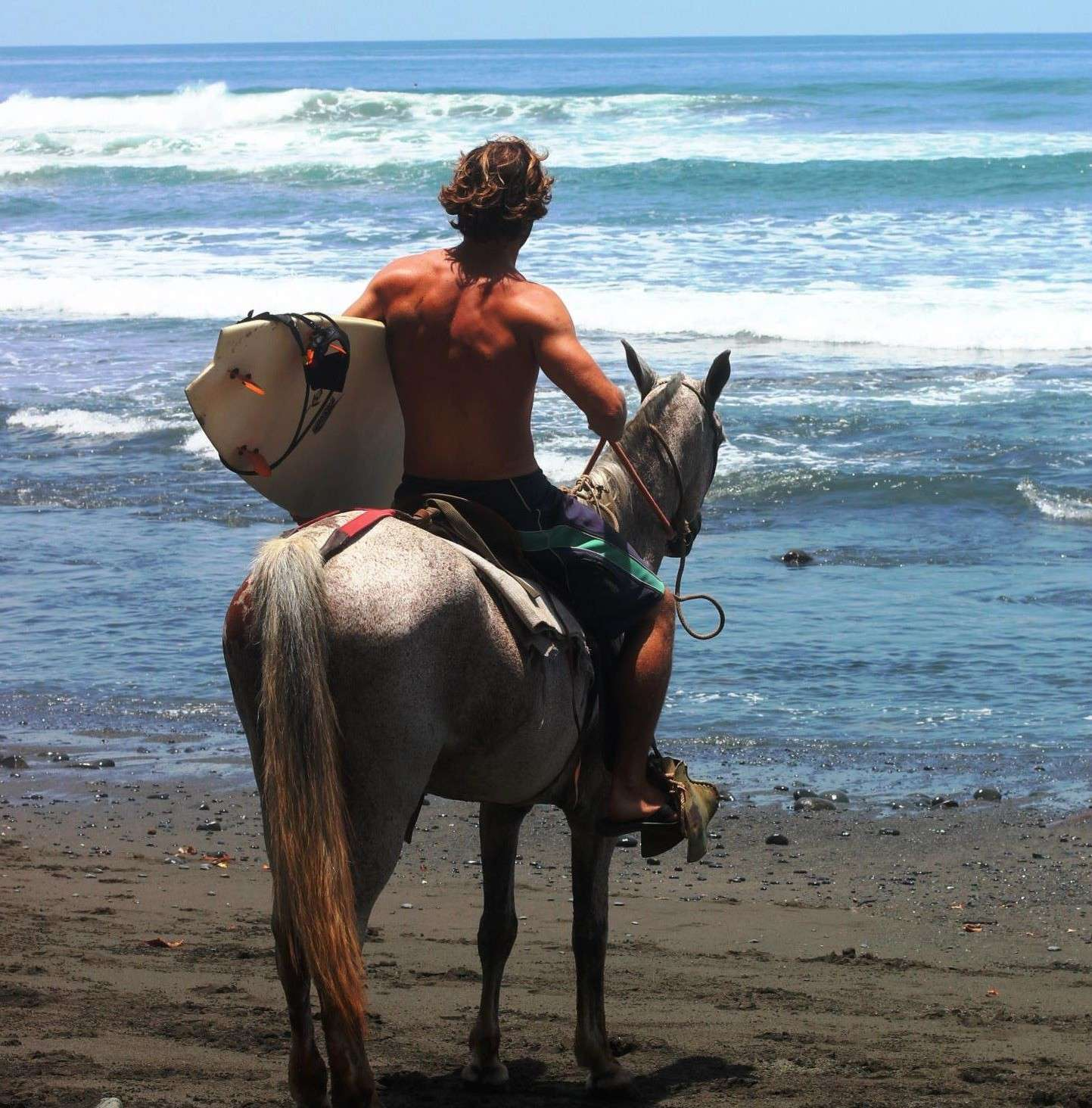 Cover Photo - Portrait de nomade Sebastion Surf Expedition - Nomad Junkies