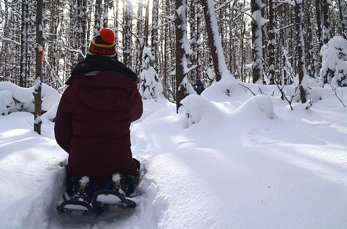 Raquettes Parc Aiguebelle Abitibi Temiscamingue Nomad Junkies