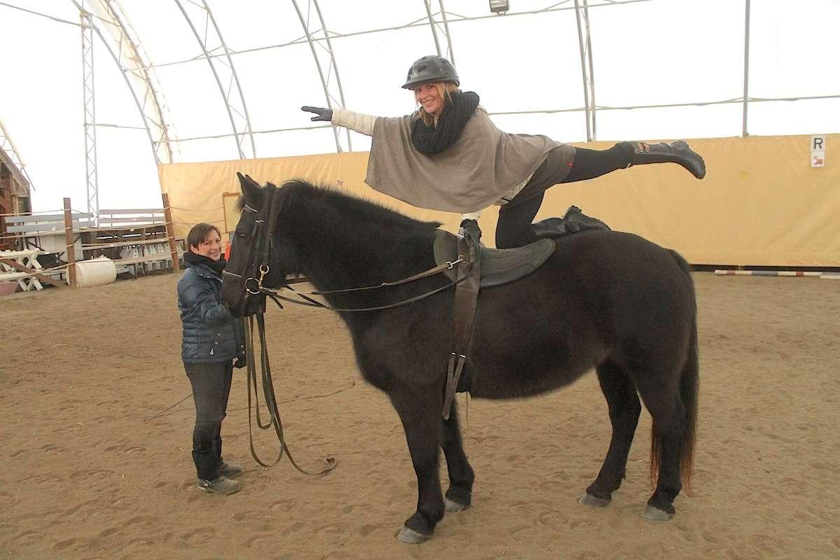 Ferme de centaure Abitibi Temiscamingue Nomad Junkies