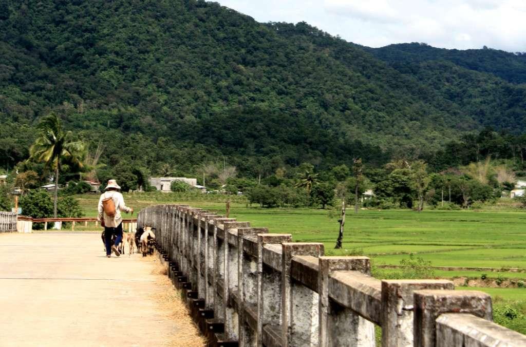 Montagnes Dalat - Récit de nomade : Motorcyle Diary au Vietnam - Nomad Junkies