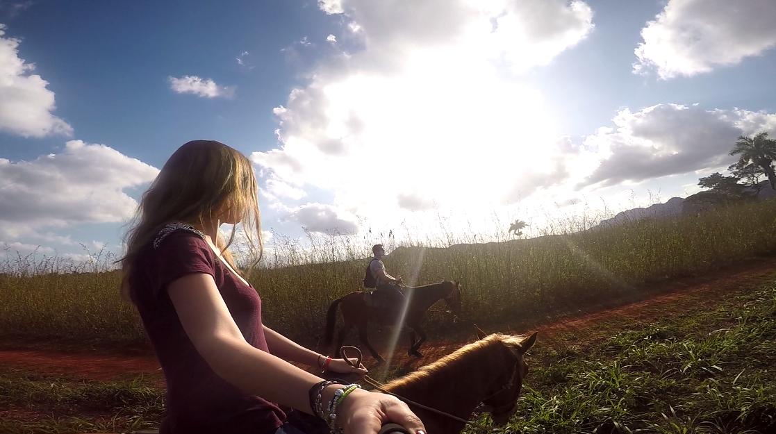 Cheval - Cuba : Un paradis inexploré pour les backpackers - Nomad Junkies