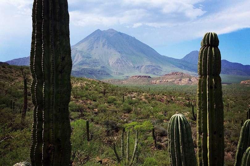 Baja California - Le trip de moto d'une vie jusqu'au Guatemala - Nomad Junkies