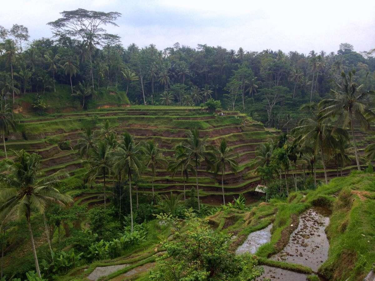 Indonésie - Comment devenir explorateur? - Nomad Junkies