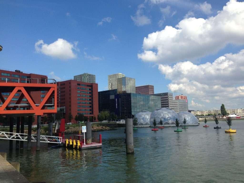 Bobbing forest - 5 raisons pourquoi Rotterdam c'est LA ville à visiter - Nomad Junkies