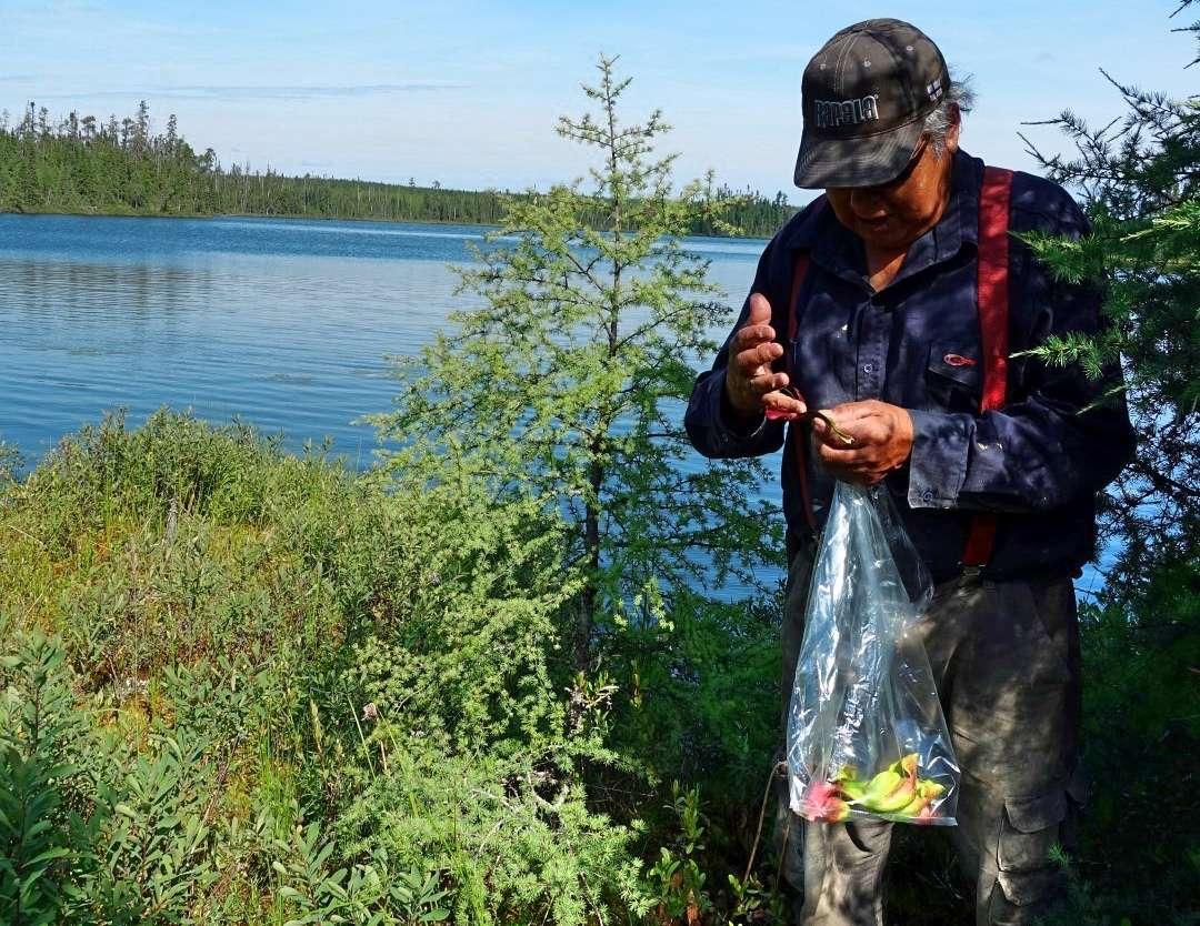 Thé - Voyage au nord du Québec à la découverte de la culture crie - Nomad Junkies