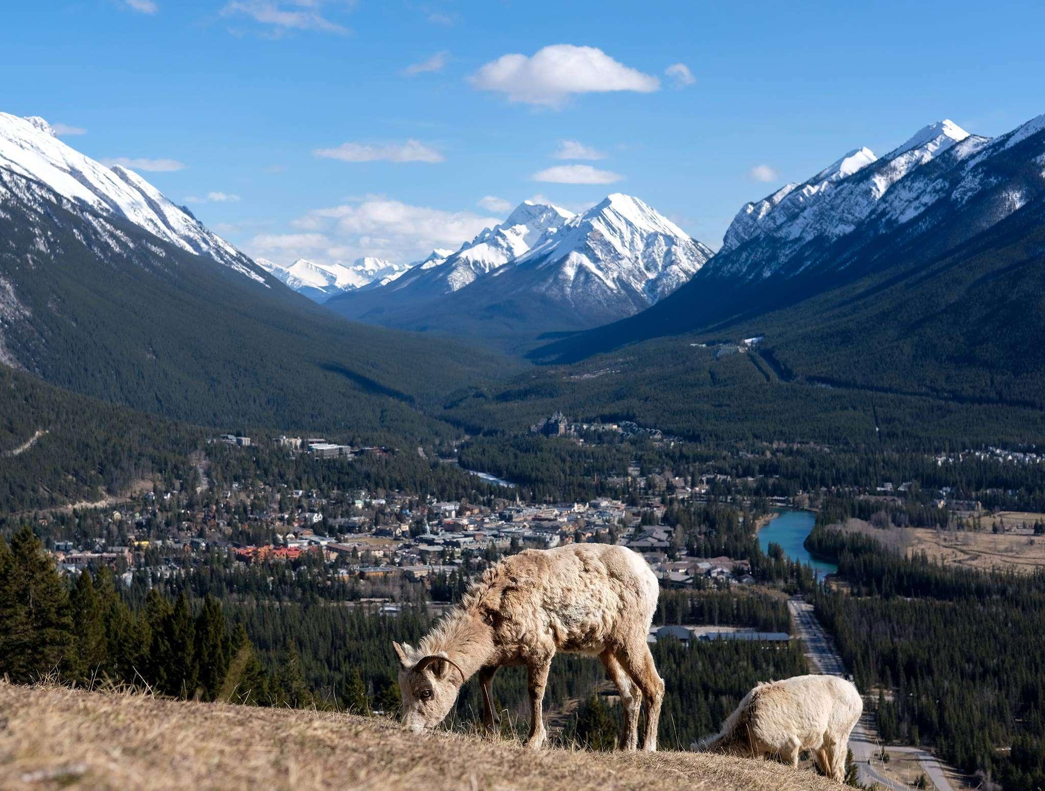 Montagnes - Ma soif d'être nomade ne fit pas dans le moule - Nomad Junkies