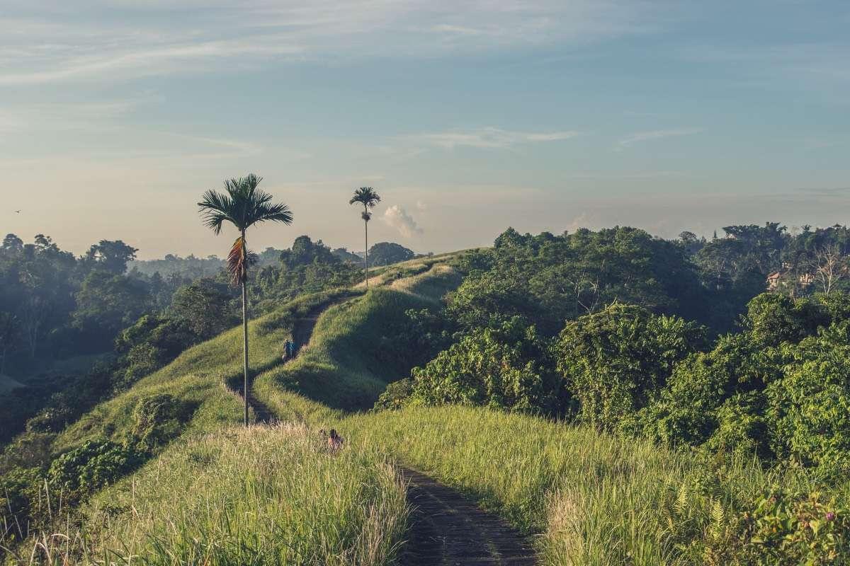 Ubud Canpuhan - Le guide ultime pour votre séjour de surf à Canggu, Bali - Nomad Junkies