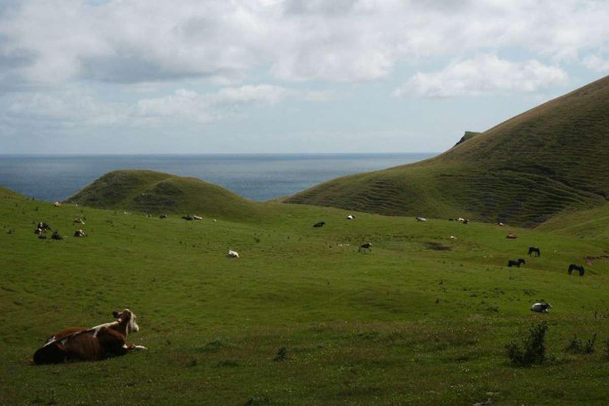 Ile d'entrée - Les Îles-de-la-Madeleine: mon petit coin de pays - Nomad Junkies