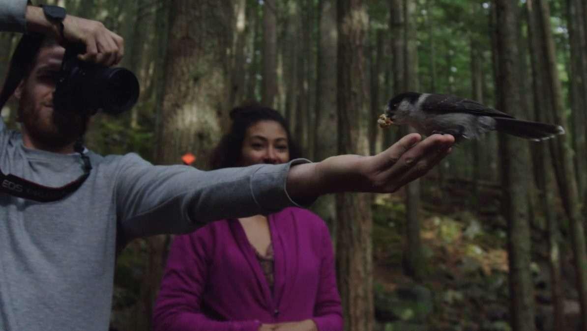 Francis oiseau - Épisode 1 : dans l'Ouest canadien - Génération Nomade - Nomad Junkies