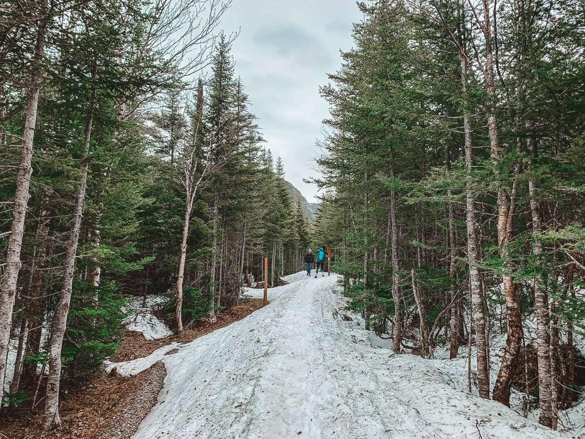 Parc national de la Gaspésie - Québec