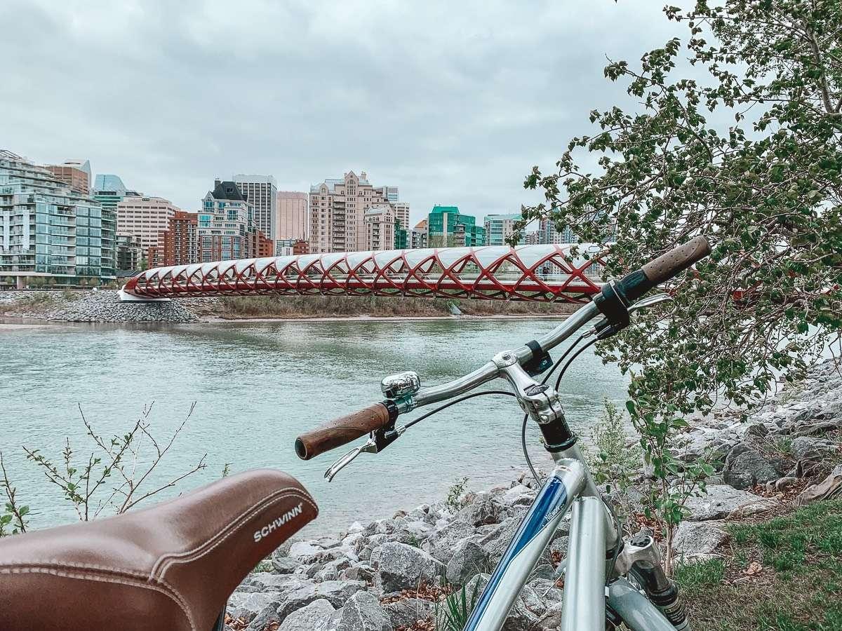 Peace Bridge Calgary - Backpacking Canada: 10 days in Alberta - Nomad Junkies