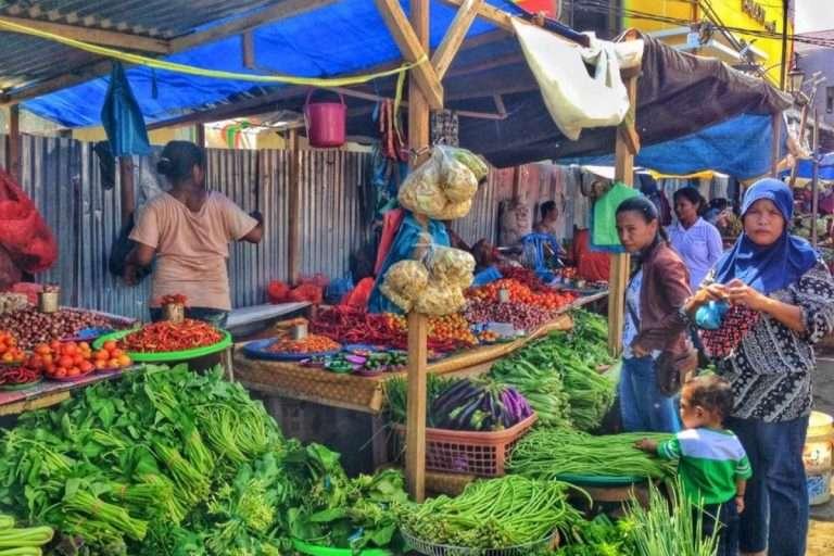 Tourista 101 : quels sont les remèdes naturels à connaître pour ton prochain voyage?